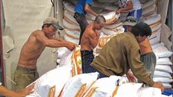 Trung Quốc tiếp tục mua vét gạo qua thương lái: Lợi trước mắt, tiềm ẩn rủi ro