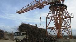 Nông nghiệp công nghệ cao: Khó tìm nguồn đất sạch, nhiều tiền cũng... chịu