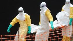 Người Việt cần làm gì trước nguy cơ dịch Ebola?