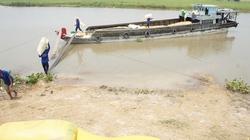 Sau việc Trung Quốc cấm nhập khẩu gạo qua đường tiểu ngạch: Tiến tới giao thương minh bạch