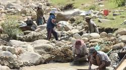 """Hàng trăm người đổ xô tìm vàng vì tin đồn """"trúng 1,4kg vàng"""" ở Quảng Ngãi"""