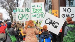 Vì sao châu Âu ác cảm với thực phẩm biến đổi gene?