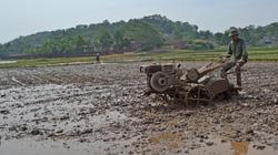 Bắc Giang: Phấn đấu dồn điền đổi thửa 4.700ha