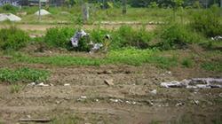 Tranh chấp đất ở Hải Phòng: Chính quyền bất lực?