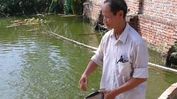 Thêm vốn hỗ trợ, nuôi cá thêm lãi