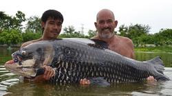 Nhờ miếng bánh mì, câu được... cá chép khủng nhất thế giới