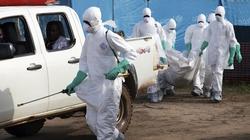 Có 130 người Việt tại các vùng dịch Ebola