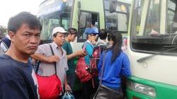 Bán vé xe buýt giả, trưởng Ban kiểm soát vé xe buýt bị bắt