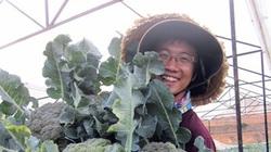 """4 """"hot boy"""" rủ nhau lên Đà Lạt... trồng rau hữu cơ"""
