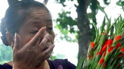 Dòng người lặng lẽ chúc sinh nhật cố Đại tướng Võ Nguyên Giáp