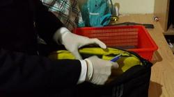 Bắt giữ nữ du khách vận chuyển gần 3kg cocain