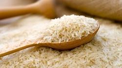 NÓNG: Kết quả Vinafood 1 và 2 thầu bán 500.000 tấn gạo cho Philippines
