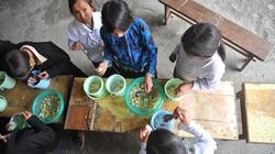Khai giảng ở vùng dân tộc, miền núi: Lo... cơm cho trẻ tới trường