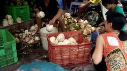 """BÀNG HOÀNG """"Công nghệ"""" làm trắng vỏ dừa bằng chất tẩy độc hại"""