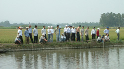 Xây dựng NTM ở Bình Sơn (Quảng Ngãi): Huy động tốt nguồn lực trong dân