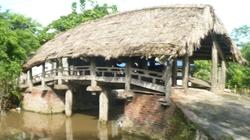 Đắng lòng nhìn cầu gỗ nghìn tuổi sắp thành phế tích