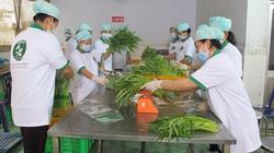 350 đơn vị được chứng nhận VietGAP cho vùng trồng rau