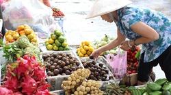 """Tiếp bài """"Trái cây Thái Lan """"tung hoành"""" chợ Việt"""": Nguy cơ mất thị trường  xuất khẩu"""