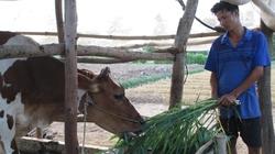 Cần chính sách toàn diện cho phát triển nông nghiệp, nông thôn vùngđồng bào Khmer