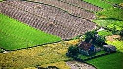 """Những """"tấm thổ cẩm"""" trên cánh đồng mới gặt ở Bắc Sơn"""
