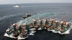 10 năm, xua đuổi gần 7.800 lượt tàu cá Trung Quốc vi phạm chủ quyền