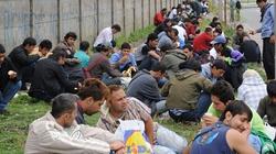 Số phận người nhập cư ở Calais (Pháp): Đổi đời bằng... mạng sống
