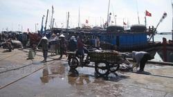 Dự án Cảng cá Đông Tác (Phú yên): Ngày 25.9 cưỡng chế hai trường hợp