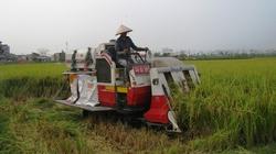 Nhập đến 90% lượng phân bón, máy nông nghiệp: Tràn ngập máy Trung Quốc
