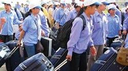 500.000 lao động Việt Nam làm việc ở nước ngoài