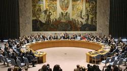 Việt Nam ứng cử vào Hội đồng Bảo an Liên Hợp Quốc