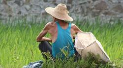 Đau đớn cảnh cha mẹ già Trung Quốc tự tử để giảm gánh nặng cho con