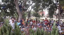 Nghi án nhóm người Trung Quốc đánh thuốc mê, bắt cóc trẻ em tại Bình Thuận
