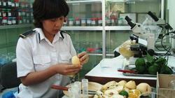 Kiểm nghiệm 120 mẫu thịt nghi nhiễm chất cấm