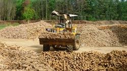 Trung Quốc vẫn là thị trường quan trọng cho nông sản Việt