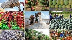 6 tháng cuối năm nay, ngành nông nghiệp cần làm ra thêm 22.000 tỷ đồng