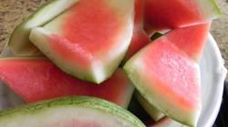 Sử dụng vỏ dưa hấu, nước dưa chua... để giải nhiệt cho vật nuôi