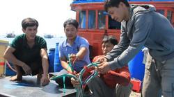 Tàu cá Việt Nam bị tàu TQ đâm chìm tại Hoàng Sa