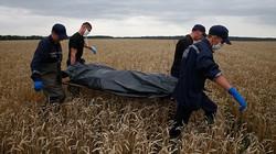 Nỗi ám ảnh của chuyên gia khám nghiệm tử thi thảm kịch MH17