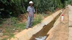 Thiếu nước, dân khoét trộm kênh lấy nước vào ruộng
