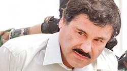 """Cai ngục Mexico cung kính gọi trùm ma túy là """"Ông chủ"""""""