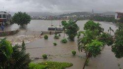 Nông dân miền Bắc khẩn trương khắc phục hậu quả sau mưa lũ