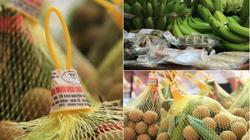 Liên kết trong sản xuất - xu thế phát triển tất yếu của nông nghiệp hiện đại