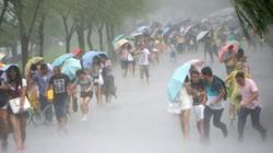 Siêu bão tàn phá Trung Quốc, 8 người chết