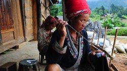 Nghịch lý đời sống nông thôn: Làm nhiều hơn, thu nhập ít hơn