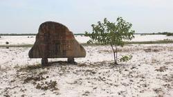 Dân thiếu đất, các dự án bỏ hoang hàng trăm ha