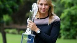 Thừa tiền, Sharapova đầu tư mở giải quần vợt