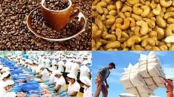 Xuất khẩu nông sản 8 tháng giảm 4,8%