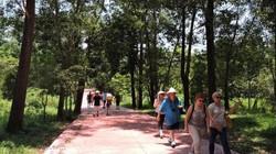 Ngỡ ngàng vẻ đẹp cổ kính rêu phong tháp cổ Mỹ Sơn