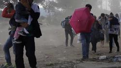 Nga tuyên bố sẵn sàng đón người tị nạn Syria