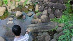 Trùng tu hệ thống giếng cổ nghìn năm ở Quảng Trị